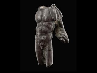 image Torso of an Athlete